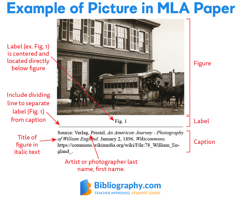 labeled figure for MLA online picture