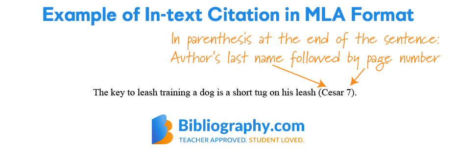example in-text citation MLA