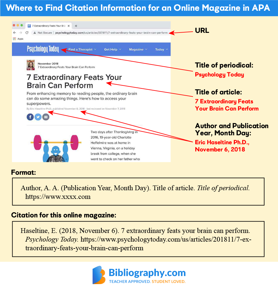 find citation information online magazine APA