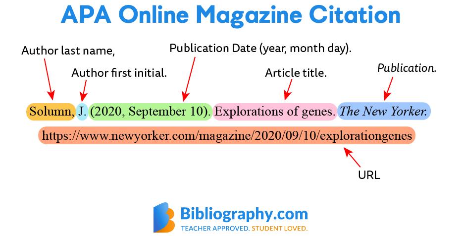 APA online magazine citation